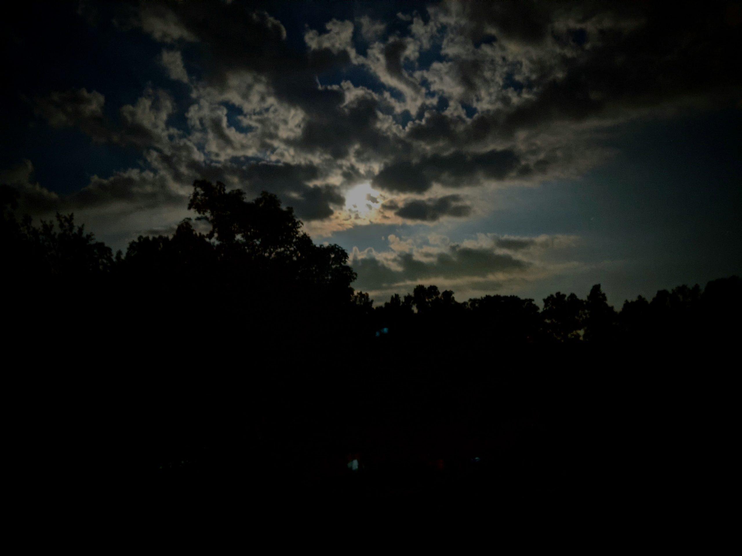 Poetry Break On An August Night